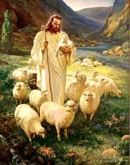 1 - a shepherd